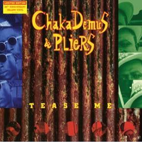 Chaka Demus Amp Pliers Tease Me